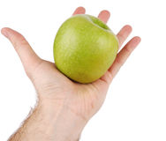 Green apple. On the opened palm Royalty Free Stock Images