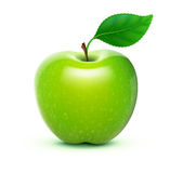 Green apple. Vector illustration of detailed big shiny green apple Royalty Free Stock Photos