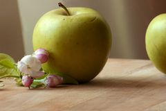 Green apple with apple blossom. Springtime with apple blossom and fresh fruits Royalty Free Stock Photo