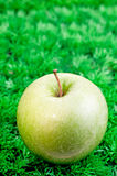 Green apple close up Royalty Free Stock Photo