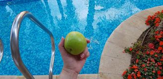 Green apple in female hand over blue waters stock photo