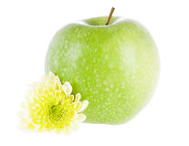 Green apple and flower Stock Photos