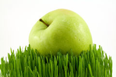 Green apple on grass. Green apple on green grass isolated on white Stock Image