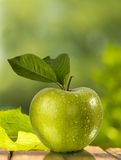 Green apple with green background Royalty Free Stock Images