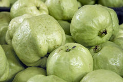 Green Apple Guavas Closeup Royalty Free Stock Photos