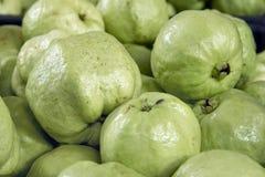 Green Apple Guavas Closeup Royalty Free Stock Photos