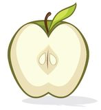 Green apple half. Vector illustration of the Green apple half Royalty Free Stock Photo
