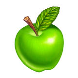 Green apple isolated. On white background vector illustration