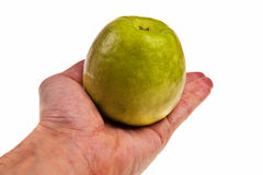 Green apple laying on white male hand. Stock Photography