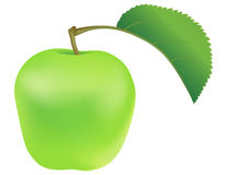 Green apple with leaf Stock Photo