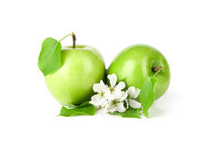 Green apple with leaf Royalty Free Stock Images