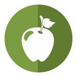 Green apple leave fruit shadow. Vector illustration eps 10 Stock Photos