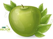 Green apple and leaves Royalty Free Stock Photo