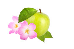 Green apple with leaves and flower rose hips isolated on white b Stock Photo