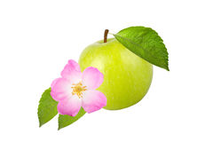 Green apple with leaves and flower rose hips isolated on white b Stock Photography