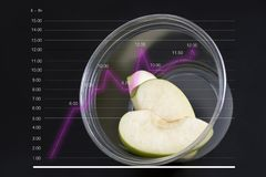 Green apple. The line graph shows an increase in dietary food consumption. The concept of healthy living with diet food. Vegan food fruit vegetarian isolated royalty free stock images