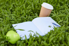Green apple lying on fresh grass. With pencil Royalty Free Stock Images