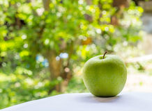 Green apple on nuture background Royalty Free Stock Photo
