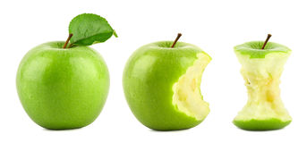 Green apple row Stock Images