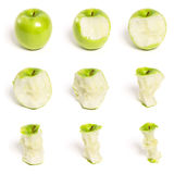 Green Apple Series Stock Photography