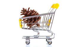 Green apple in shopping cart Stock Images
