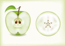 Green apple slice Stock Images