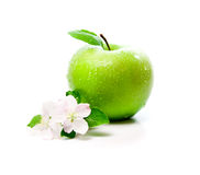 Green apple with spring flowers Stock Photo