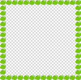 Green apple square photo frame or border on transparent background. Green apples square photo frame or border  on transparent background. Vector template Stock Photography