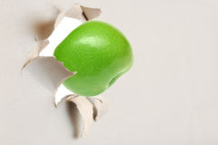Green apple through the torn paper Royalty Free Stock Photos