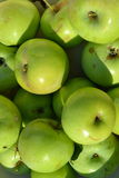 Green apple. The apple tree is a deciduous tree in the rose family best known for its sweet, pomaceous fruit, the apple royalty free stock photo