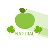 Green apple tree natural organic icon flat vector Stock Photography