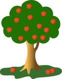 Green apple-tree. The green apple-tree is vector illustration Stock Photos