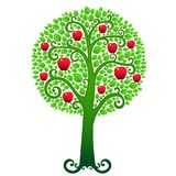 Green apple tree Royalty Free Stock Photos