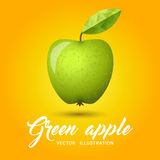 Green Apple vector illustration Royalty Free Stock Images