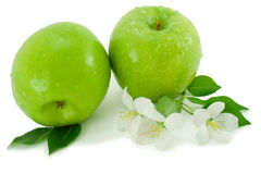 Green apple and white flower. Royalty Free Stock Photography