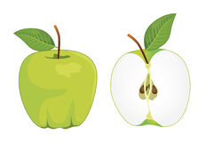 Green apple whole and half apple , vector set. Vector illustration Stock Image