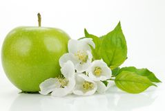 Green Apple With Blossom Royalty Free Stock Image