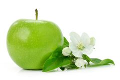 Green Apple With Blossom Royalty Free Stock Photography