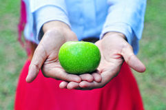 Green apple and women. Young Muslim holding an green apple Royalty Free Stock Photos