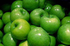Green Apples. Group of tasty tangy mouth watering fresh green apples for autumn harvest Royalty Free Stock Image
