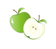 Green apples. Vector illustration of green apples  on white background Stock Image