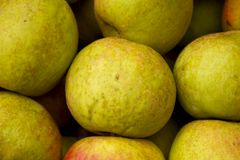 Green Apples. Background. Closeup of a fresh . Photo taken from the top Stock Photography