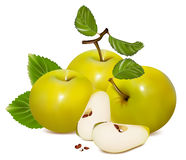 Green apples. Royalty Free Stock Images