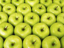 Green apples. Large group of green apples in a row. Horizontal shape Stock Photos