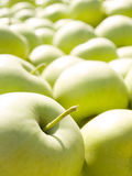 Green apples. Royalty Free Stock Image