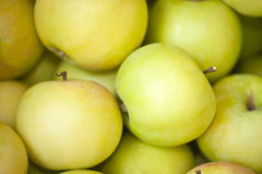 Green apples. Fresh juicy green apples in close up Stock Photo