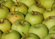 Green apples. A lot of green apples detail in the marketplace stock photography