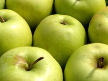 Green apples background Royalty Free Stock Photography