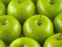Green Apples Background. Background of shiny, green apples Royalty Free Stock Image