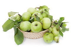 Green apples in basket Royalty Free Stock Photo